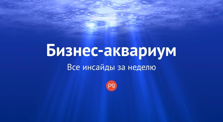 Бизнес-аквариум: совещание у Владимира Зеленского и законопроект об игорном бизнесе